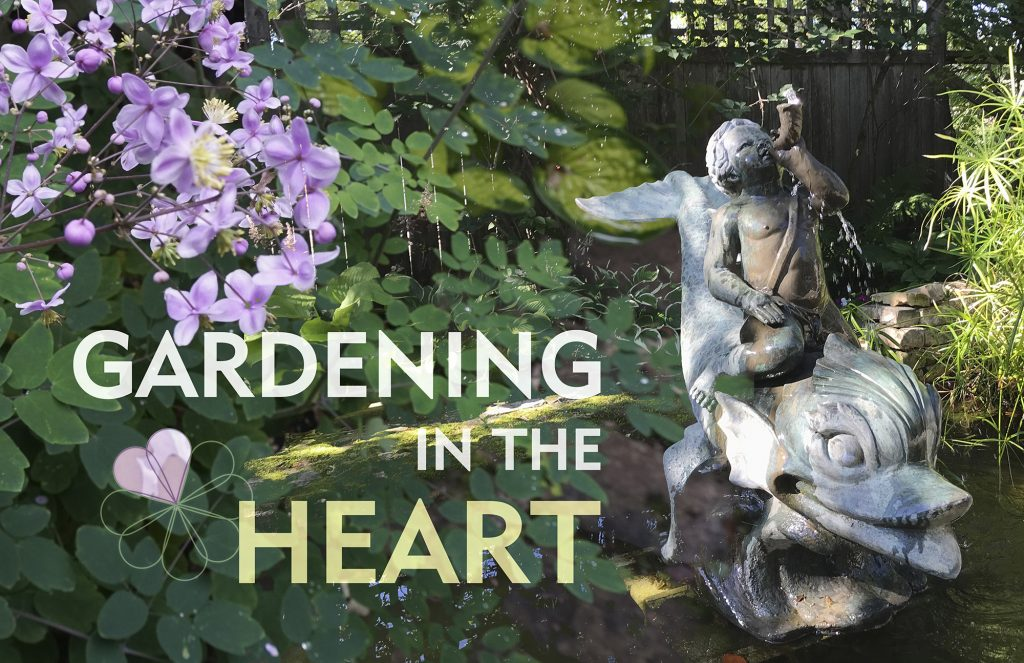Chat with the Gardeners - Gardening in the Heart @ Zoom meeting online