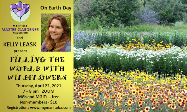 Filling the World with Wildflowers @ Zoom meeting online