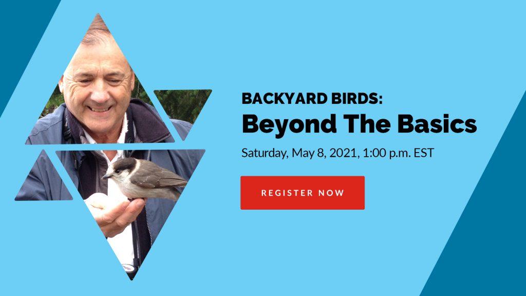 Backyard Birds - Beyond the Basics @ Zoom meeting online